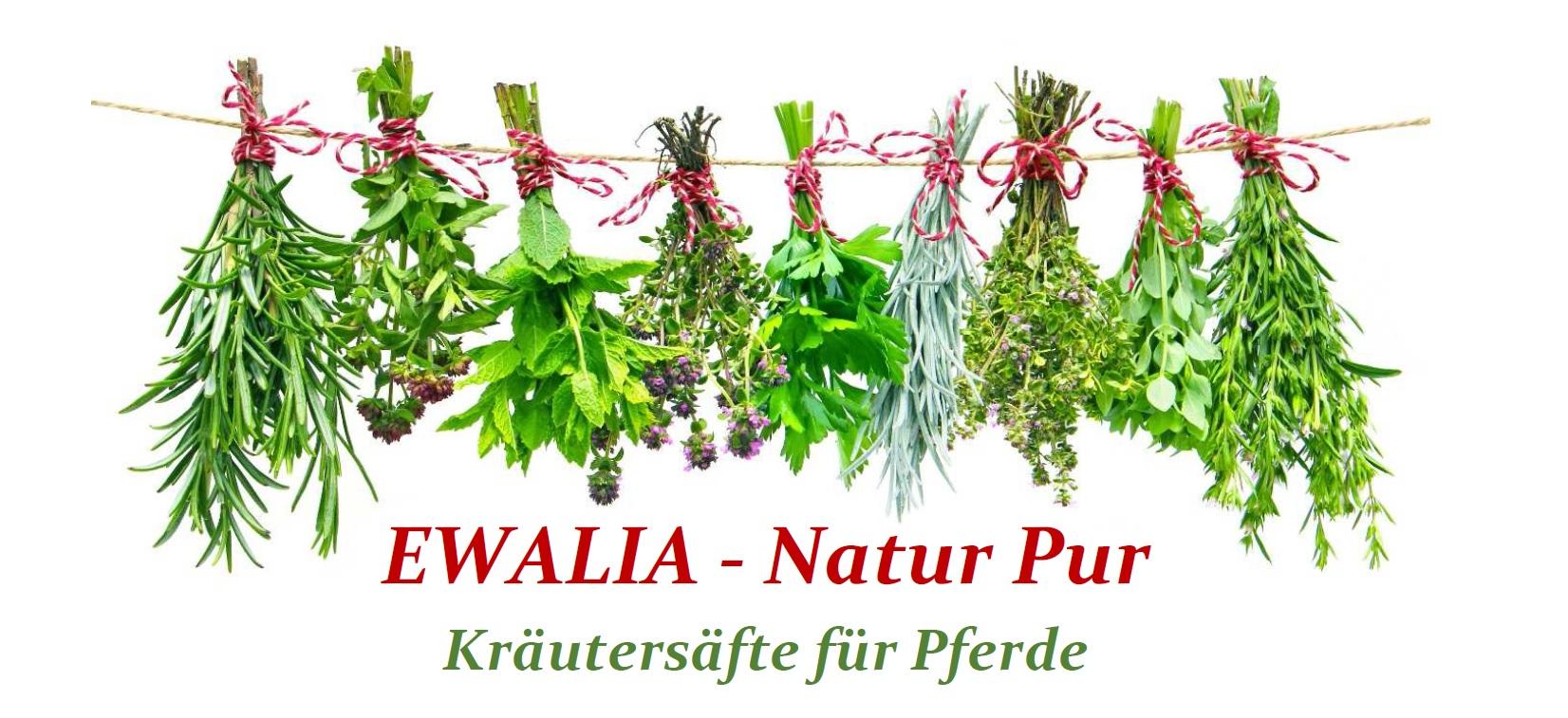 logo Ewalia.11.2.2016