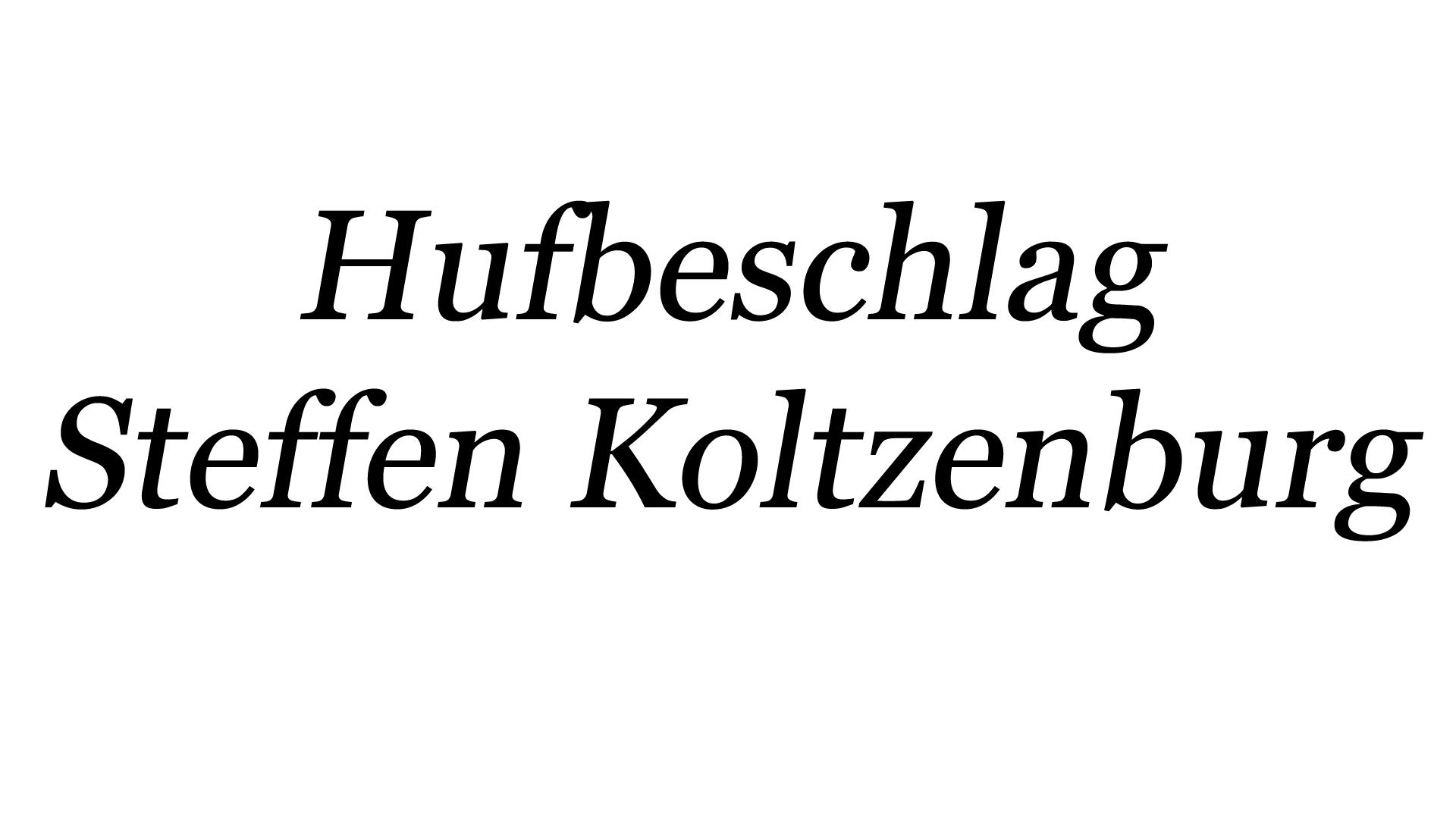 Hufbeschlag_SteffenKoltzenburg