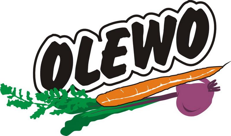 2019_Sponsoren_web_Logos_LOGO OLEWO